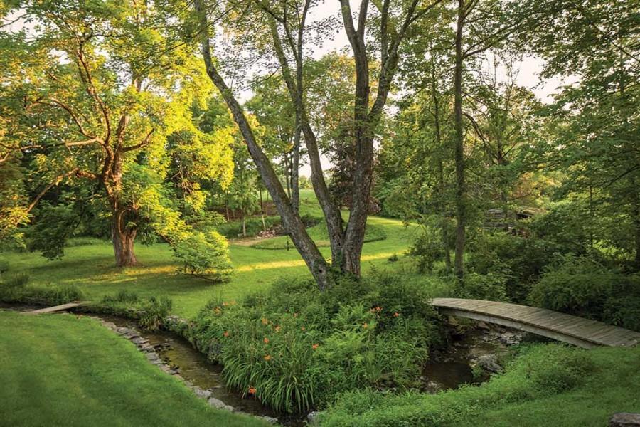 BC-Road---Garden-panorama