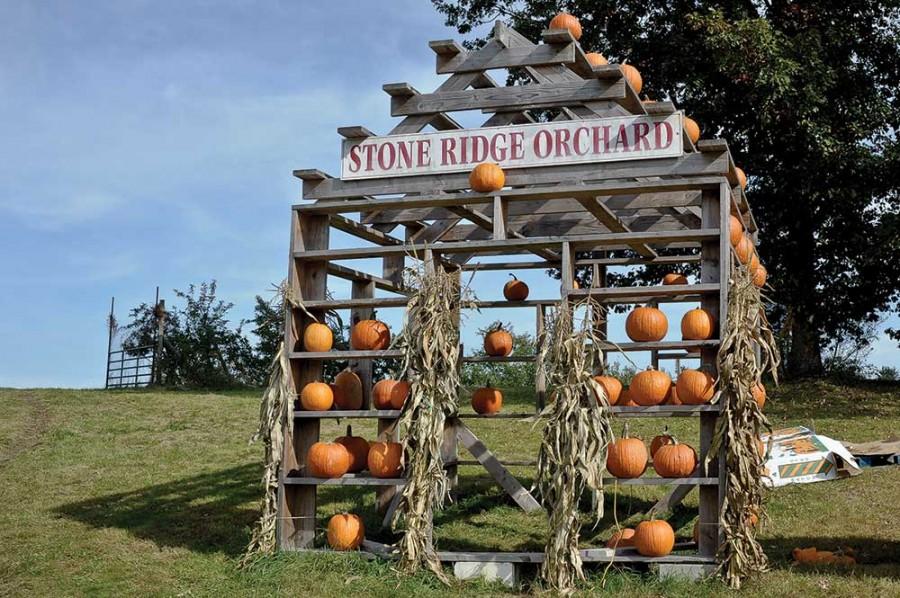 rv_stone-ridge-orchard_DMC2316