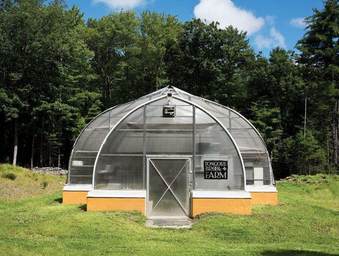 microgreens geothermal greenhouse